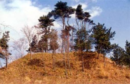 『赤浜一号墳(市指定史跡)』の画像