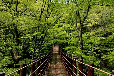 『花貫渓谷01』の画像