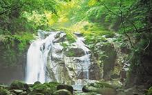 『5. 不動滝・乙女滝』の画像