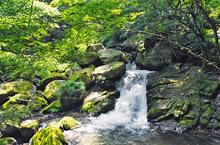 『3. 滝山渓谷』の画像