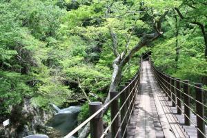『花貫渓谷2【春・小】』の画像