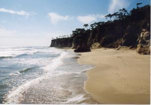 『海岸【夏・小】』の画像