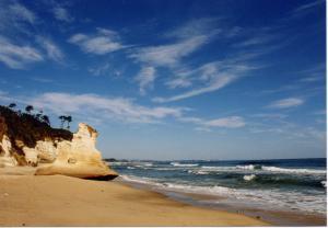 『海岸2【夏・小】』の画像