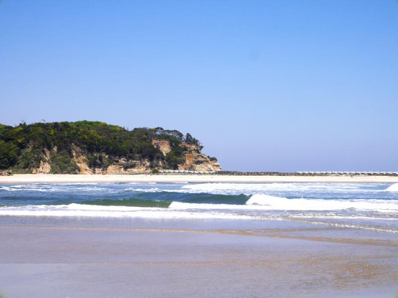 『前浜海岸』の画像