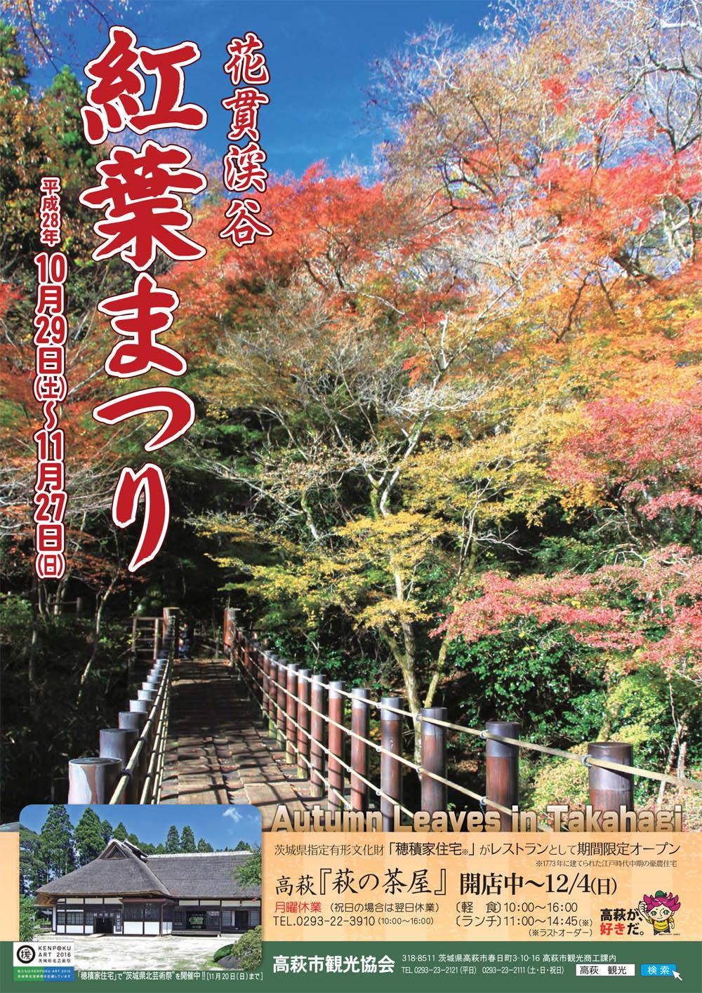 『『花貫渓谷紅葉まつりチラシ 表』の画像』の画像