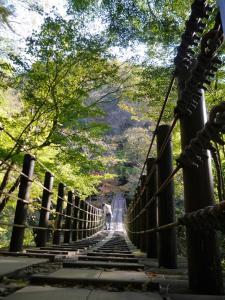 『11月6日 花貫渓谷の紅葉状況3』の画像