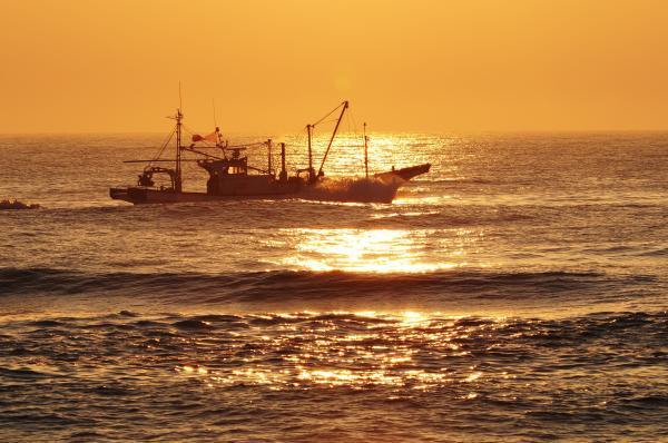 『赤浜海岸(春)』の画像