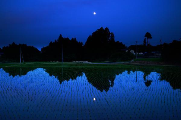 『水田2』の画像